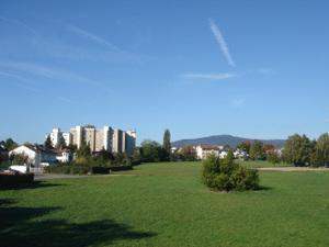 Oberurselstierstadt_2